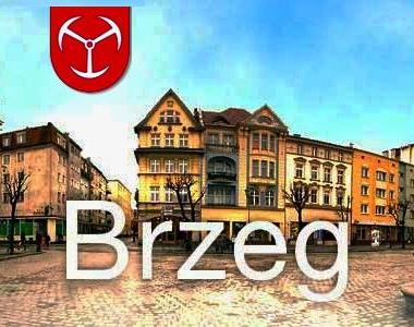 Subregion Brzeski – analiza Strategii Współpracy Subregionu